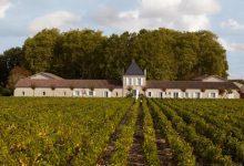 Crus Bourgeois : les Médoc, quel genre de vin ?