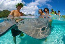 Allergie au tahiti : comment s'y prendre pour éviter les mauvaises réactions du corps ?